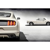 La Ford Mustang fête ses 50 ans.
