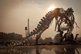 Philippe Pasqua expose son T-Rex prés de la Tour Eiffel.