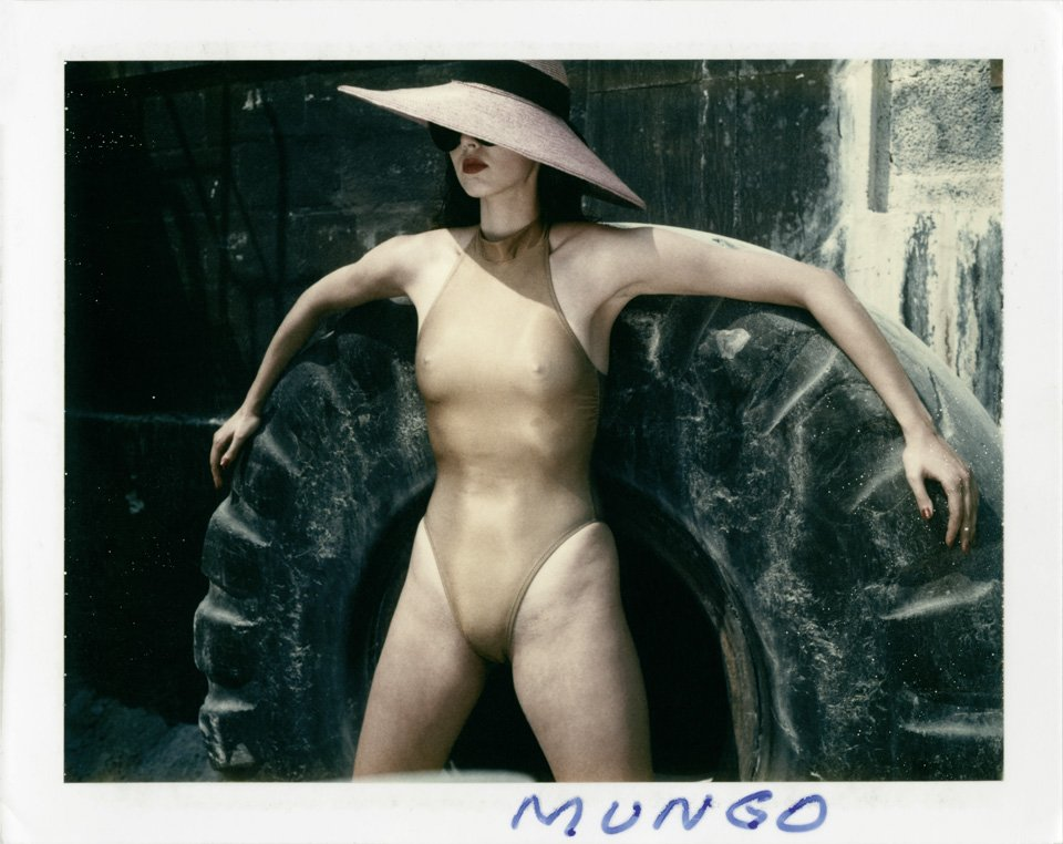Helmut Newton Polaroid